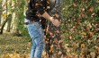 Herbst (5)